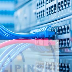 ECO Voice IP Premium ISDN Anschluss (T0/ S0)