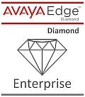 AVAYA Diamond Enterprise Partner