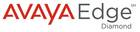 AVAYA Diamond Enterprise Partner Logo